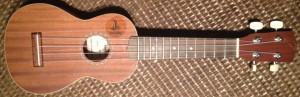 2014-07-12 01.36.31-ukulele-1_resize