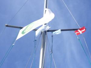 flaga T w akcji
