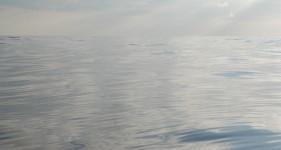 cisza na morzu nie wróży nic dobrego
